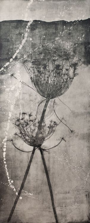 mosaicval:  lapresquile:  © Elisabetta Diamanti   these seed heads are one of my favourite images, love what you did