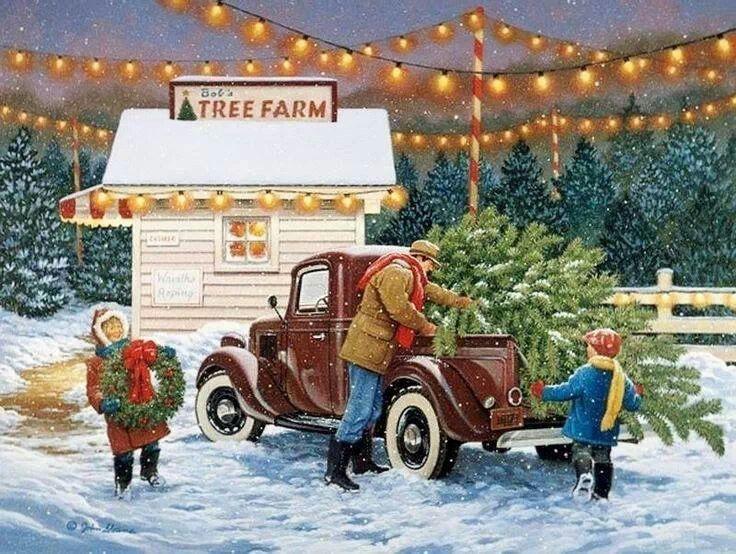 138 best Christmas tree farm images on Pinterest   Christmas tree ...