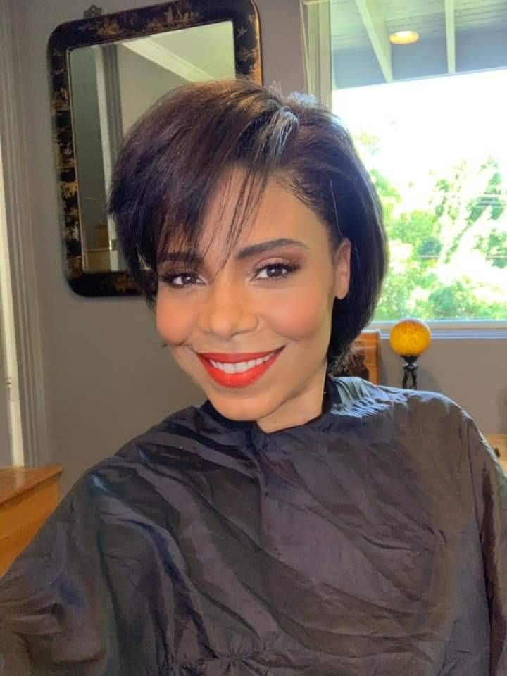 Sanaa Lathan Fan Blog In 2020 Sanaa Lathan Natural Hair Styles Hair