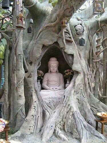 "Buddha in Bodhi Tree. ""When we resist change, it's called suffering. But when we…"