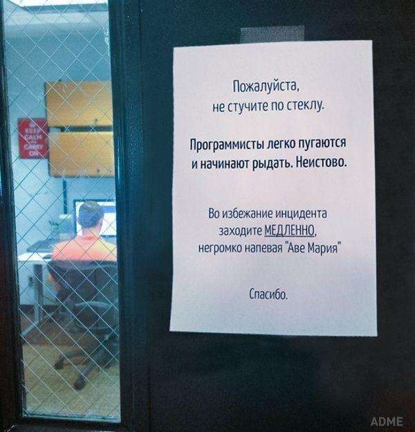 Офисные шутки Фото, офисный юмор, юмор, прикол, длиннопост