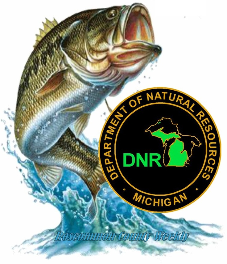 17 best images about dnr on pinterest charts wilderness for Dnr weekly fishing report