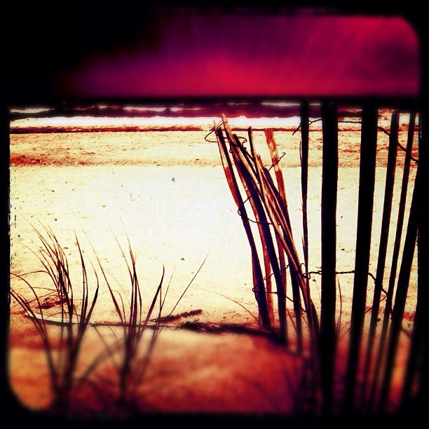 "@daltis's photo: ""Dark Surf""Dalti Photos, Daltis Photos, Daltiss Photos"