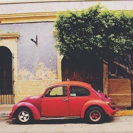 Best car ever! Love the contrast of colors here in the Historic Center.  Photo 📷 @erkzng #repost . . . . . . . #mazatlan #mexico #casalucila #visualsoflife #travelstoke #travelmexico #visitmexico #visitmazatlan #itsbeautifulhere #lifewelltravelled #traveltheworld #igtravel #worldingram #smallhotel #hotelstories #instatravel #photooftheday #instamexico #igersmexico #mexicocolors #mexicolindo #mexicanoscreativos #vive_mexico #vivemexico #igermexico #mexigers #mexicolors