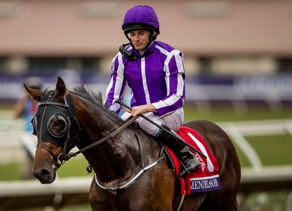 Mendelssohn (Scat Daddy), last-start winner of the GI Breeders' Cup Juvenile Turf at Del Mar Nov. 4, will make his sophomore debut in Saturday's Listed Spring Cup S. going seven furlongs over the all-weather track …