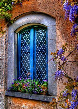 Wisteria framing a window at Farmleigh, Phoenix Park, Dublin