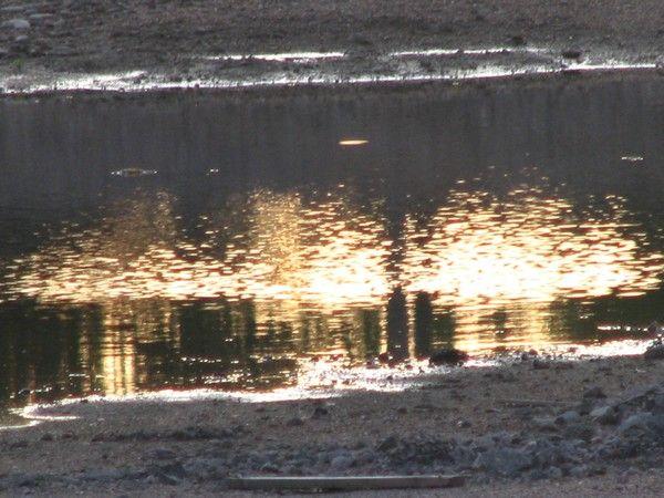 Golden touch.../water-reflection/light by Heli Aarniranta on ARTwanted