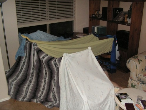 Blanket Forts made with whatever you can find in the house.