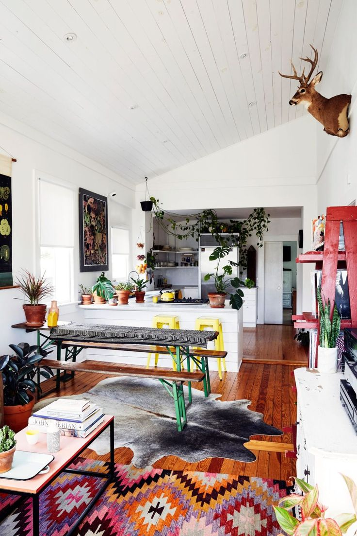 Installation Artist Creates A Home With Museum-Like Displays in South Carolina | Design*Sponge