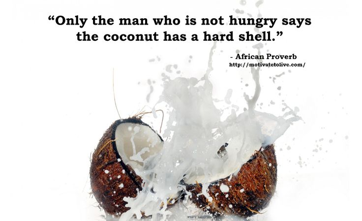 """""""Only the man who is not hungry says the coconut has a hard shell."""" African Proverb via motivatetolive.com blog"""