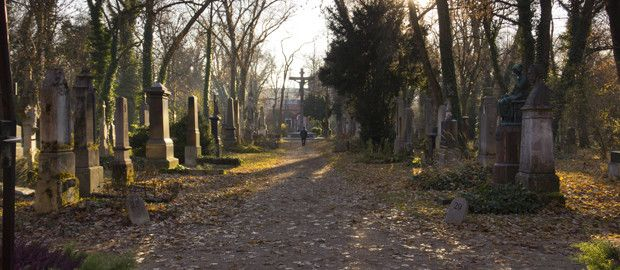 Alter Sudfriedhof Cemetery - supposed to be good photography opportunities