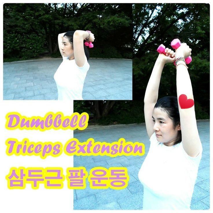 팔뚝살 다이어트~ 삼두근 공략하기! 아령 덤벨 팔운동  Dumbbell Triceps Extension 덤벨 트라이셉스 익스텐션