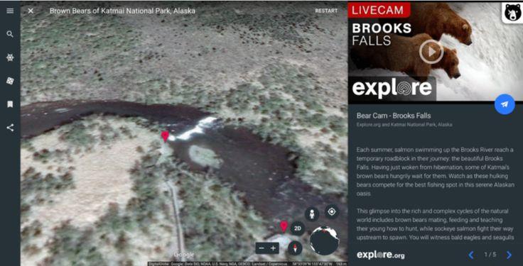 Vídeos de la naturaleza en directo desde Google Earth - https://www.vexsoluciones.com/noticias/videos-de-la-naturaleza-en-directo-desde-google-earth/