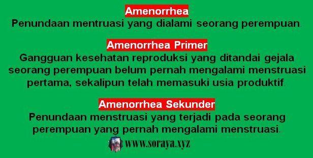 Pengertian Amenorrhea Primer dan Skunder pada menstruasi wanita
