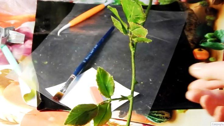 Стебель розы из холодного фарфора
