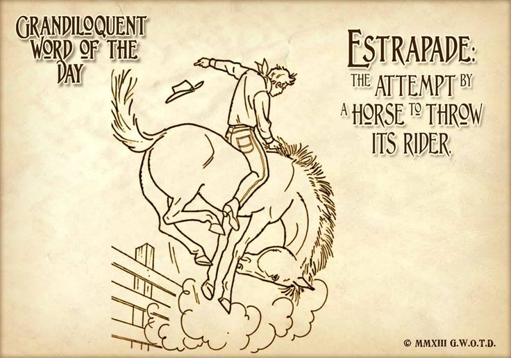 Estrapade (AY•strah•PAHD) Noun: -A horse's attempt to dump its rider. -The action of a horse, when, to get rid of his rider, he rears, plunges, and kicks furiously. -The violent yerking of the hind legs which a horse makes when desirous of getting rid of his rider.