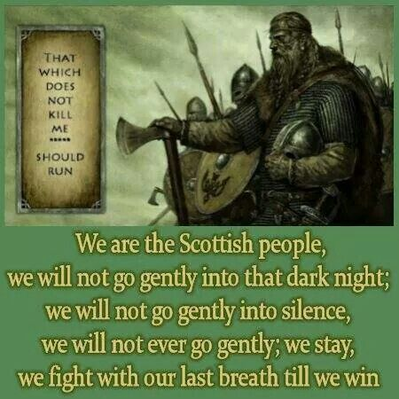 That which does not Kill me... Should run.--- Scottish