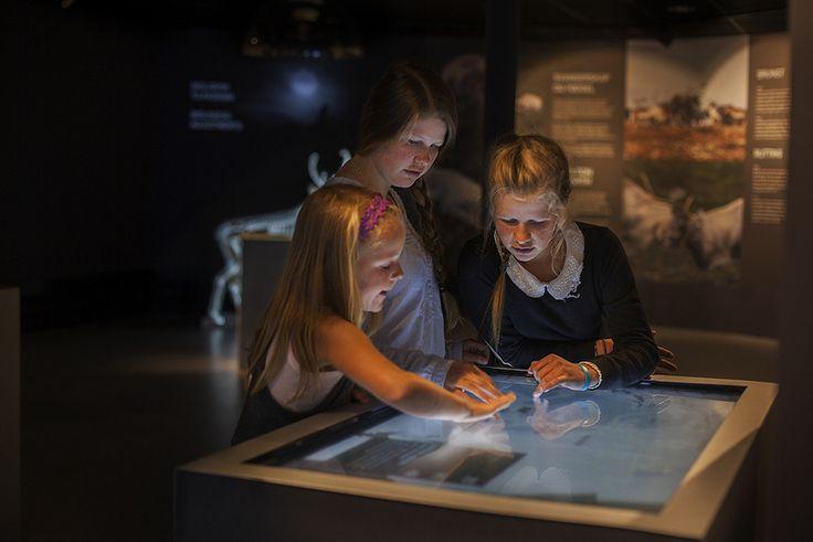 Awardwinning interactive exhibition at Hardangervidda National Park Centre.