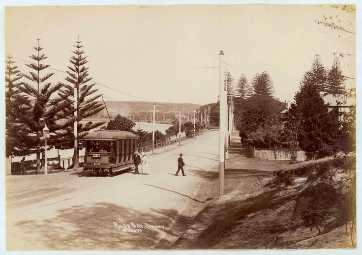 Rose Bay in the eastern suburbs of Sydney in 1900..