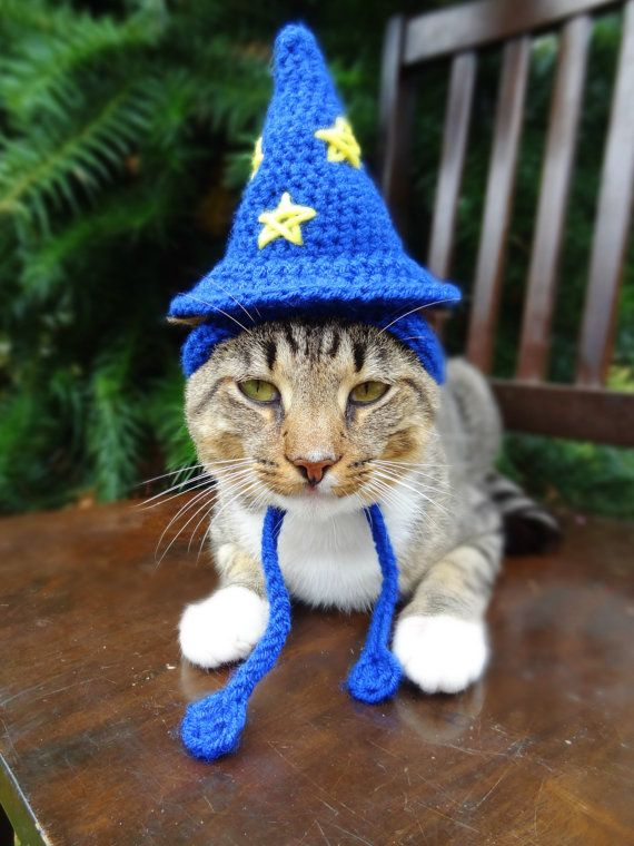 Wizard Cat Hat - Wizard Cat Costume - The Wizard of Cats Hat - Custom Wizard Hat for Cats and Small Dogs - Cat Dog Halloween Costume