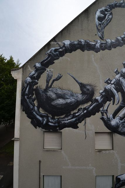 Street  art,  ROA in Christchurch - (NZ) Canterbury Museum (detail) RISE festival