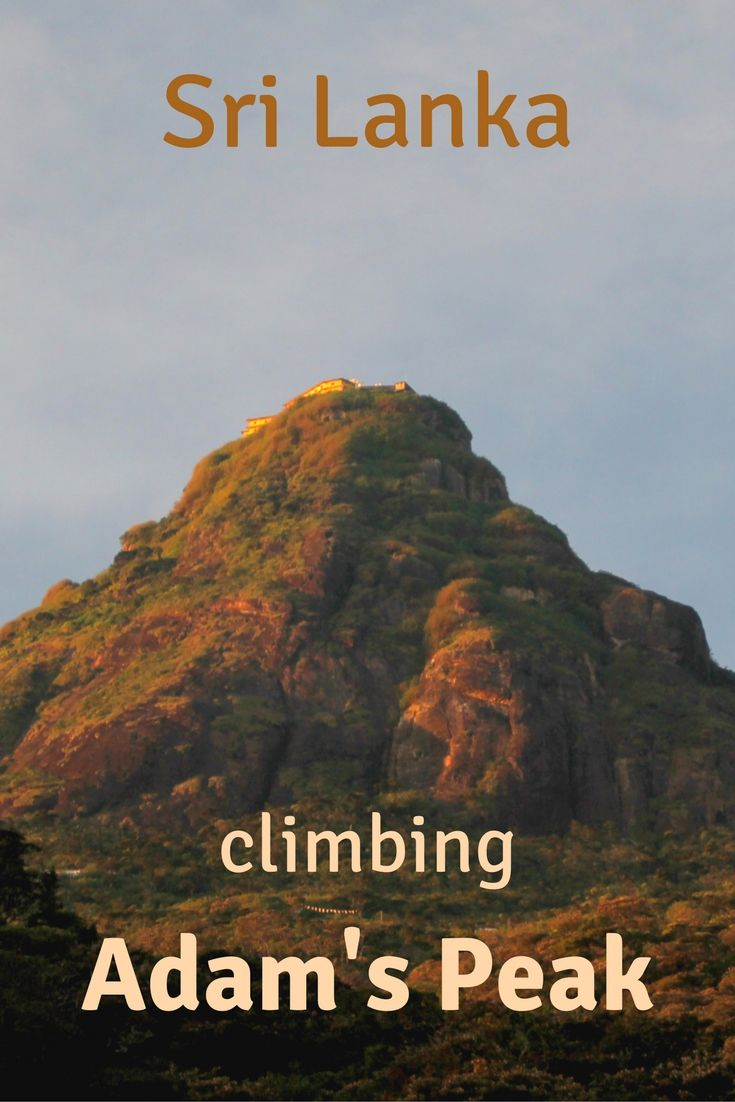 Want to climb Adam's Peak? How difficult it is and how long does it take? When is the best time? Find out in this post!