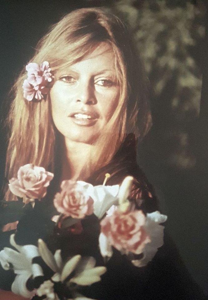 фотографии Brigitte Bardot брижит бардо 95 альбомов Brigitte Bardot Hair Brigitte Bardot Bridgette Bardot