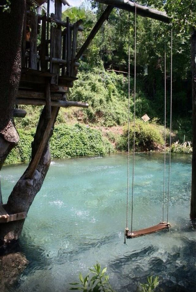 Pool made to look like a pond.