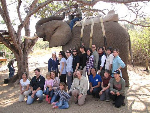 A group of Murdoch veterinary students have just returned from the 'excursion of a lifetime' at a game ranch in South Africa.