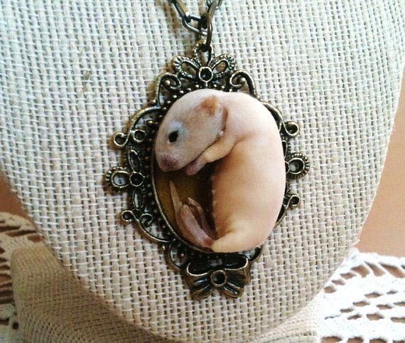 Taxidermy Kitten Mouse Necklace