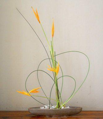 Ikebana: Arte floral Japonés                                                                                                                                                      Más