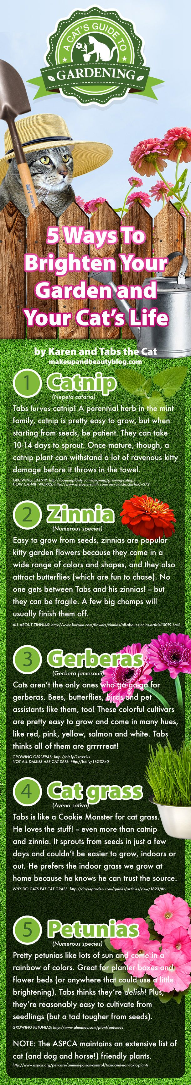 Gardening can be a very effective team-building exercise for feline-run small businesses. Here at Makeup and Beauty Blog, a subsidiary of Tabs the Cat Indu