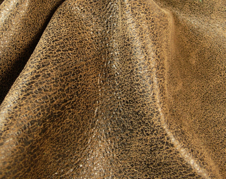 43 best images about SURFACES Leather & Skin on Pinterest ... Dolphin Skin Texture