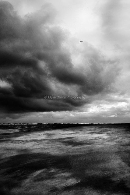 Stormy Whatipu | © Elyse Childs Photography
