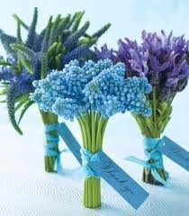 great idea for bridesmaid bouquets... veronica, grape hyacinth and lavender.