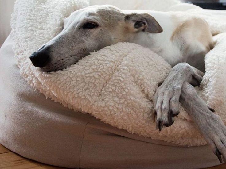 DIY- Nähanleitung für Hundekuschelsack / crafting project: sew a dog sleeping place via DaWanda.com