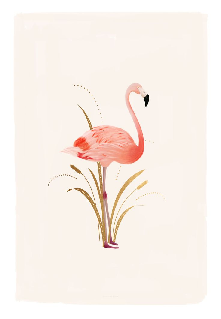 Flamingo Illustration by Cocorrina | Wallpaper Download