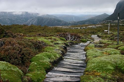 Cradle Mountain Boardwalk | via Marc Dalmulder on Flickr