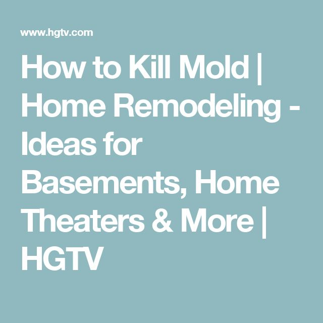 How to Kill Mold | Home Remodeling - Ideas for Basements, Home Theaters & More | HGTV