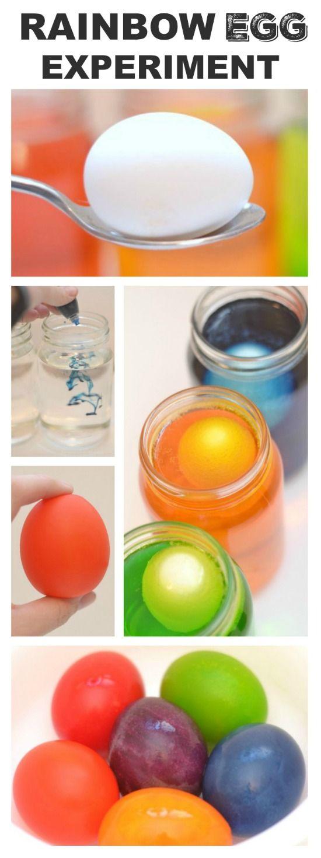 Rainbow Egg Experiment for Kids