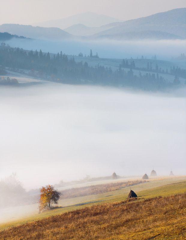 Фотография Дыхание гор / Алексей Угальников Carpathian Mountains   Ukraine