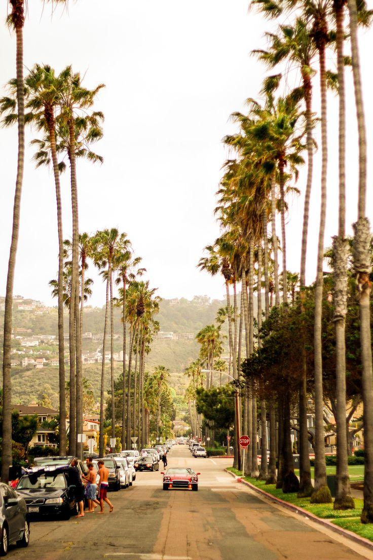 La Jolla, California. Why do palm trees look so beautiful in California!