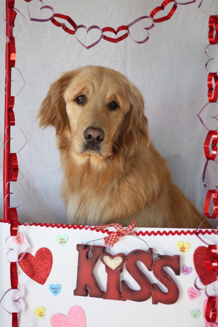 valentine day yahoo