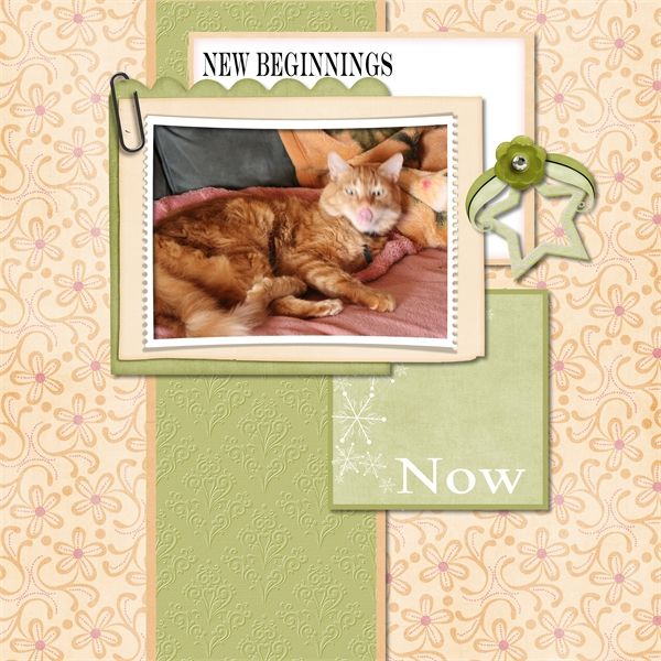 My Memories January bundle by Laura Burger Designs available at Forever https://www.forever.com/ambassador/lauraburger?redirect=https%3A%2F%2Fstore.forever.com%2Findex.php%3Froute%3Dproduct%2Fproduct&product_id=185005