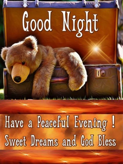Good Night. Have a Peaceful Evening! Sweet Dreams and God Bless.