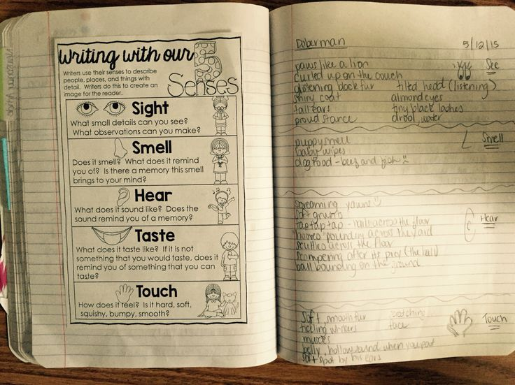 Here's the Scoop! Newspaper Article Writing Unit Resources