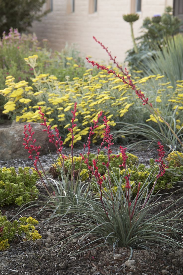 13 Best Images About Eco Friendly Garden On Pinterest