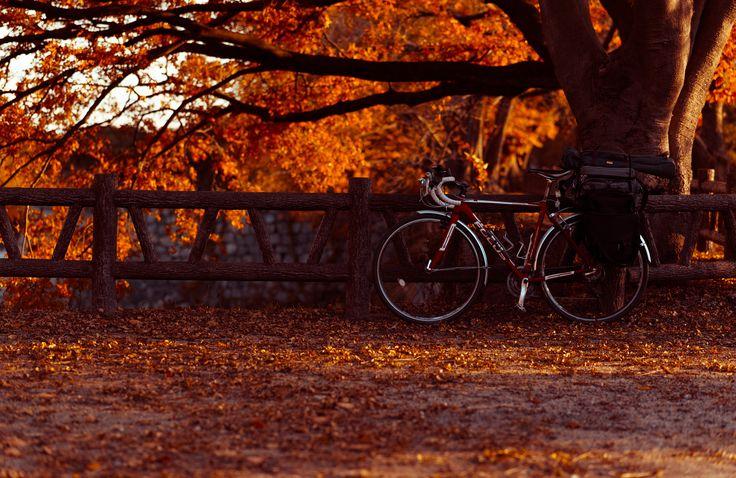 touring bike | by GGG 3