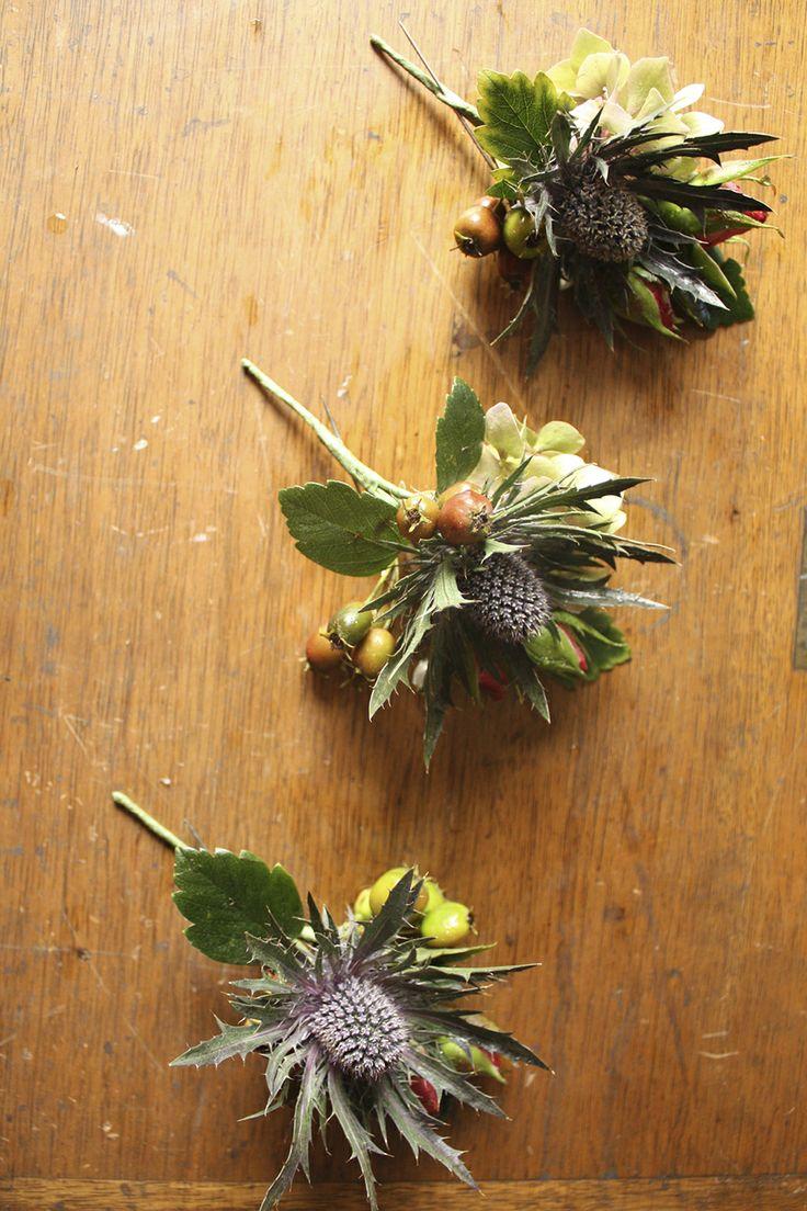 Thistles & rosebuds