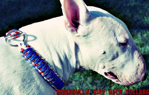 Ruff-Neck Oh-Snap! Paracord King Cobra Dog Training Collar   550 Paracord Dog Collars - Versatile, extremely durable, original, very beautiful, and homemade to fit your dog's personality. You pick the colors and style.